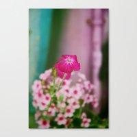 Graffiti Flower Canvas Print