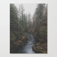 Lewis River Canvas Print