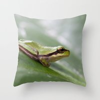 Mediterranean Tree Frog 1095 Throw Pillow