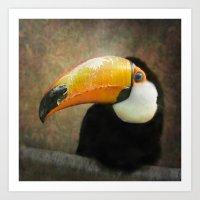 It's all about the Beak Art Print