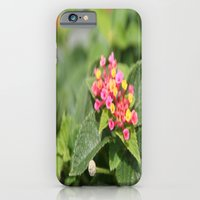 iPhone & iPod Case featuring tiny flowers by Jaclyn B Photography