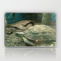 Giant Turtle Laptop & iPad Skin