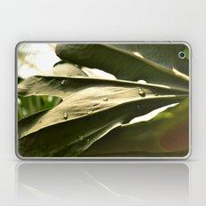 Sun Lit Green Life Laptop & iPad Skin