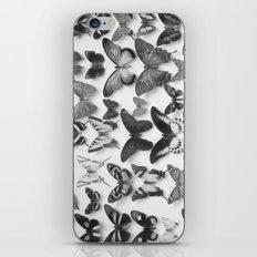 Wings II iPhone & iPod Skin