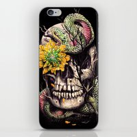 Snake And Skull iPhone & iPod Skin