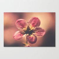 Dramatic Canvas Print
