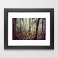 Out In The Woods Today Framed Art Print