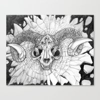 Cat Skull Canvas Print