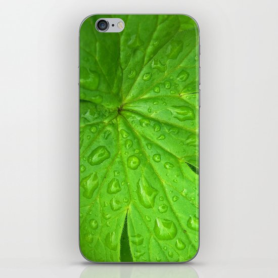 green leaf II iPhone & iPod Skin