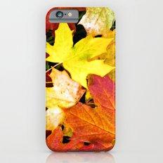 AUTUMN 7 iPhone 6 Slim Case