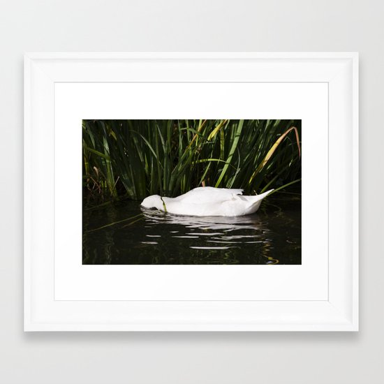 Sleep in the water Framed Art Print