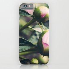 peony 4 iPhone 6s Slim Case