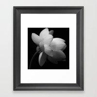 Black & While Lotus II Framed Art Print