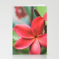 Soft Summer Plumeria Stationery Cards