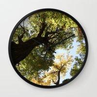 Fall Canopy - Woodland T… Wall Clock