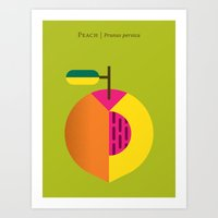 Fruit: Peach Art Print