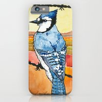 Blue Jay in the Desert iPhone 6 Slim Case