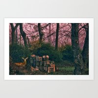 Deer in my yard Art Print