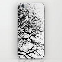 Tributary iPhone & iPod Skin