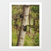 Climbing Cubs Art Print