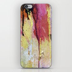 Storm on the Horizon iPhone & iPod Skin