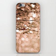 Dappled Sun iPhone & iPod Skin