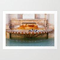 Pigeons bathing in fountain Art Print