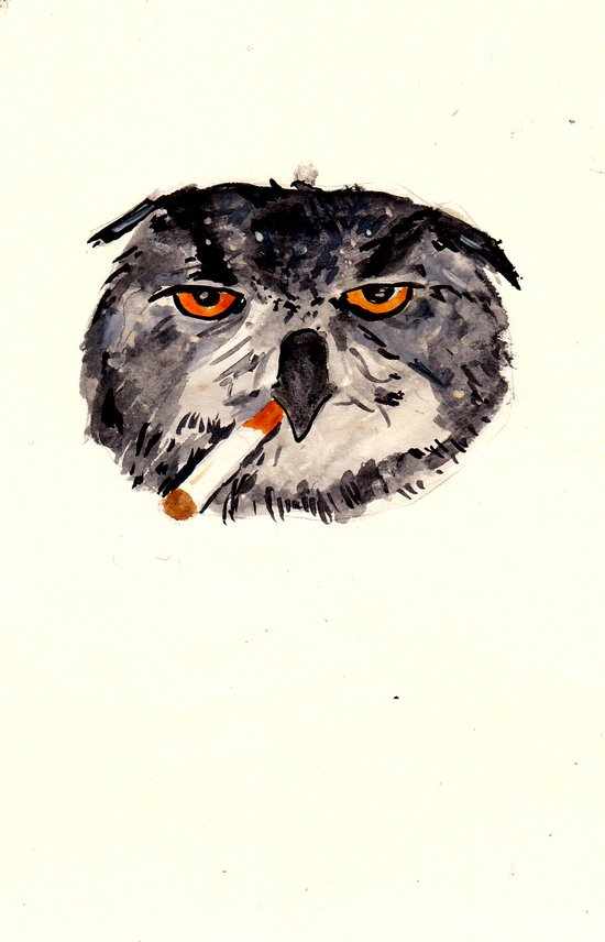art student owl watercolour Art Print
