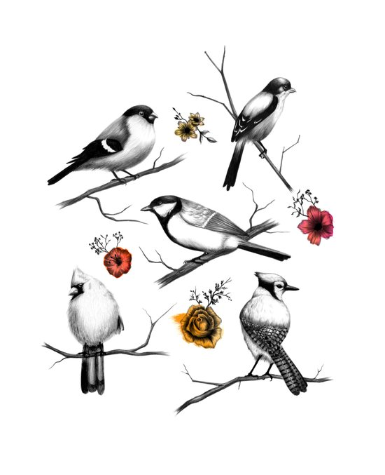 BIRDS & FLOWERS Art Print