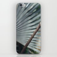 Palm Abstract iPhone & iPod Skin