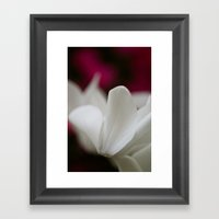 So Delicate  Framed Art Print