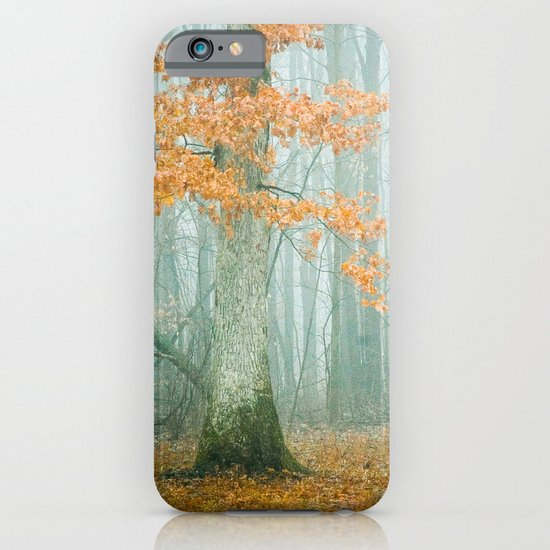 Autumn Woods iPhone & iPod Case