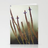Summer Botanical -- Blue Vervain Wildflowers Stationery Cards