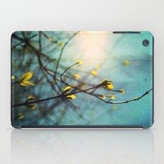 Renewal iPad Case