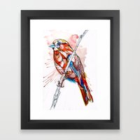 Color Spiel Framed Art Print