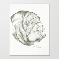 The Mighty Manatee  Canvas Print