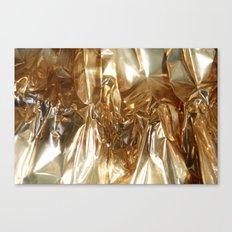 foil1 Canvas Print
