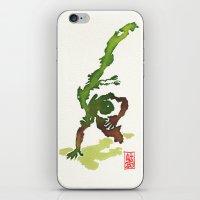 Capoeira 359 iPhone & iPod Skin