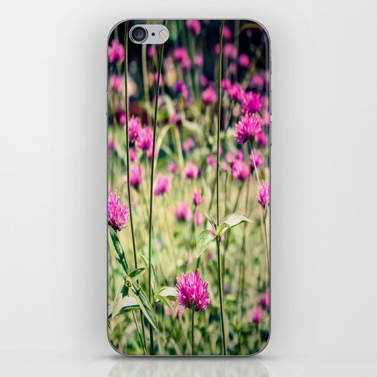 Pink Thistle Flowers in Field iPhone & iPod Skin