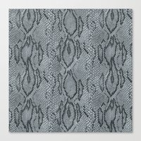 BOA SKIN (PLATINUM) Canvas Print