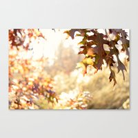 Hazy Autumn Canvas Print