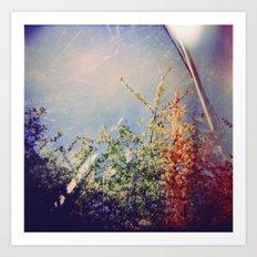 Holga Flowers IV Art Print