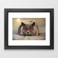 Superstar Diesel The Cat… Framed Art Print