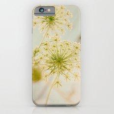 Summer Botanical Vintage Queen Anne's Lace iPhone 6 Slim Case