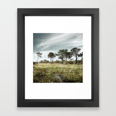 Almost a Forest Framed Art Print
