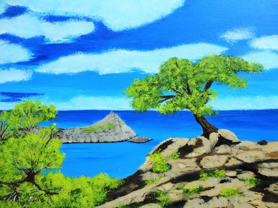 The lookout tree Art Print