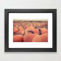 at the pumpkin patch Framed Art Print
