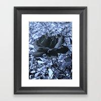 Roses I Framed Art Print