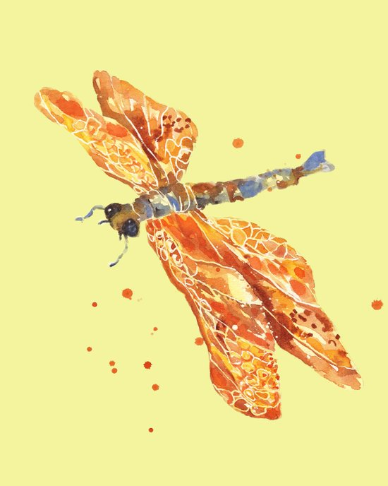 Lemon Dragonfly Art Print