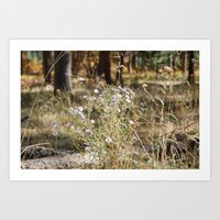 Fall Color With Flowers Art Print